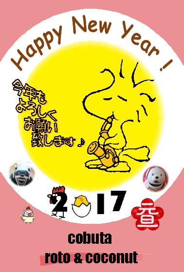 2017 aiboUP.jpg