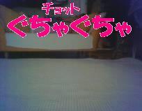 n156.jpg