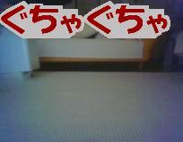 n245.jpg